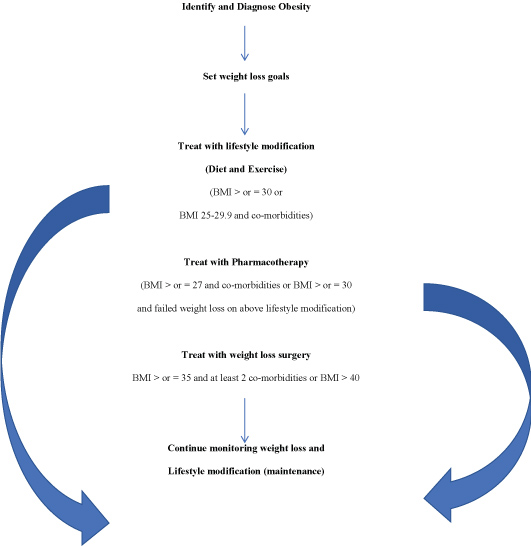 Approach To Obesity Management In The Primary Care Setting